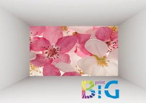 фототапети на цветяhttp://bigprint.bg/