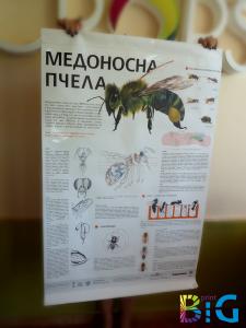 Широкоформатни рекламни плакати, http://bigprint.bg/